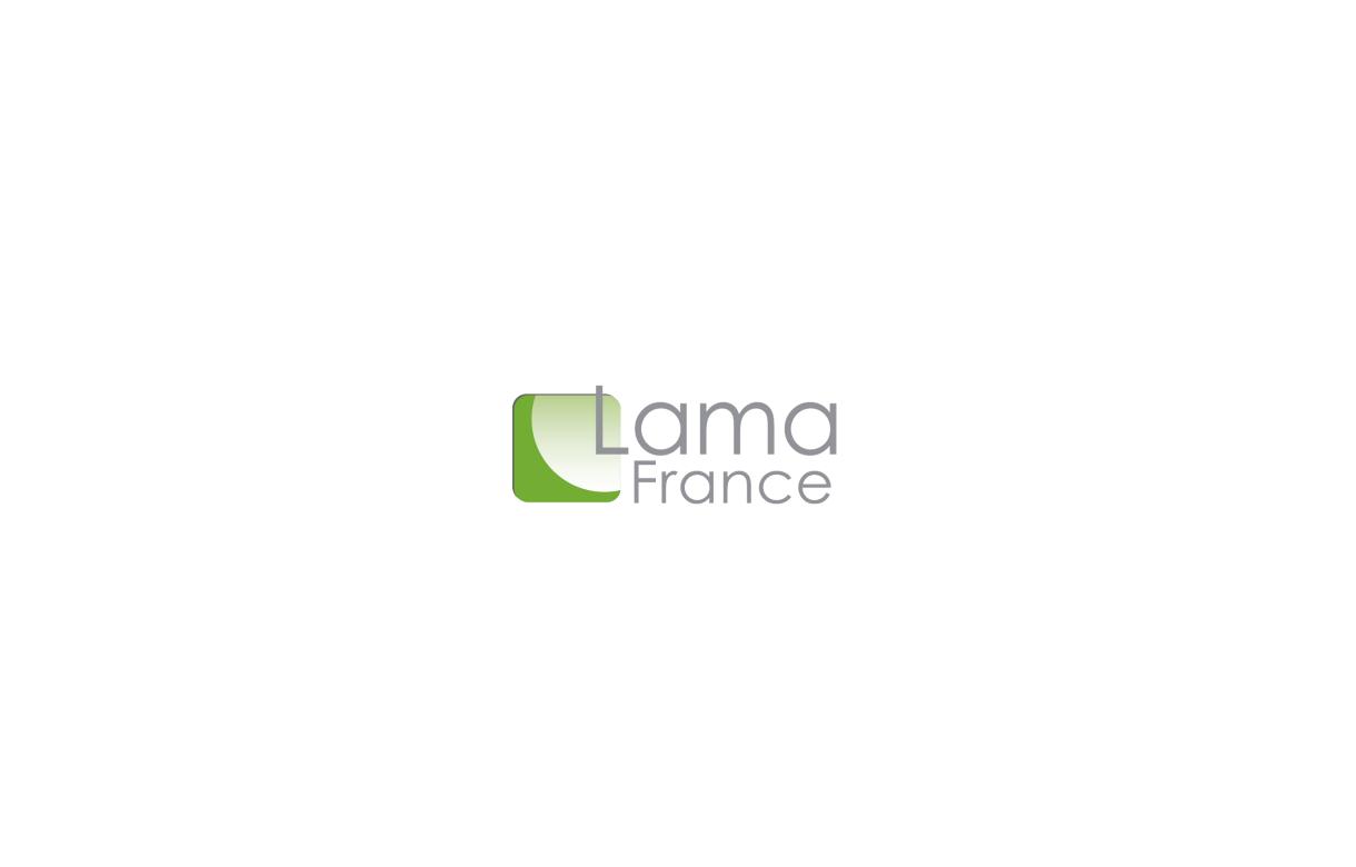 LamaFrance Drop shipping - Addons Prestashop
